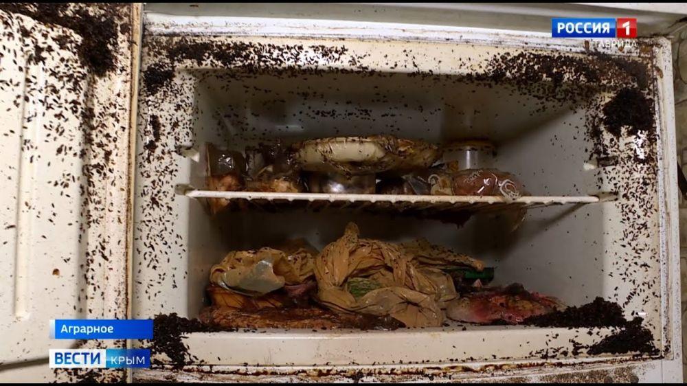 Рассадник инфекций: под Симферополем мать с сыном превратили квартиру в свалку