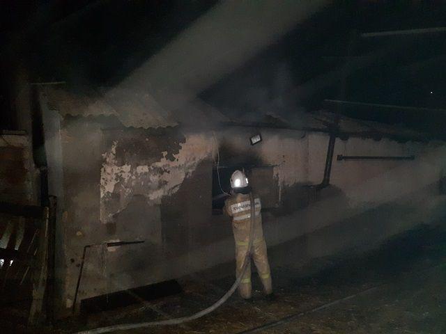 В Черноморском районе огонь уничтожил 100 голов свиней и 50 тонн зерна