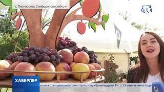 Национальный праздник урожая и плодородия – Дервиза масштабно отметили в Крыму