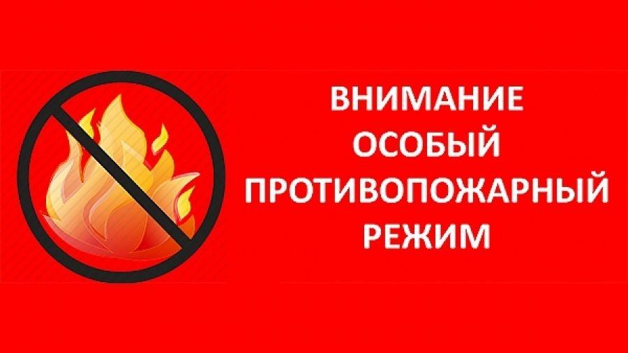 Особый противопожарный режим: Что необходимо знать гражданам