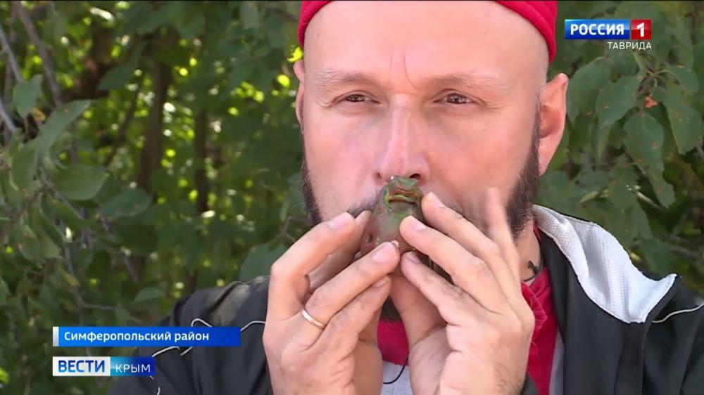 На полуострове отметили крымско-татарский праздник Дервиза-байрам