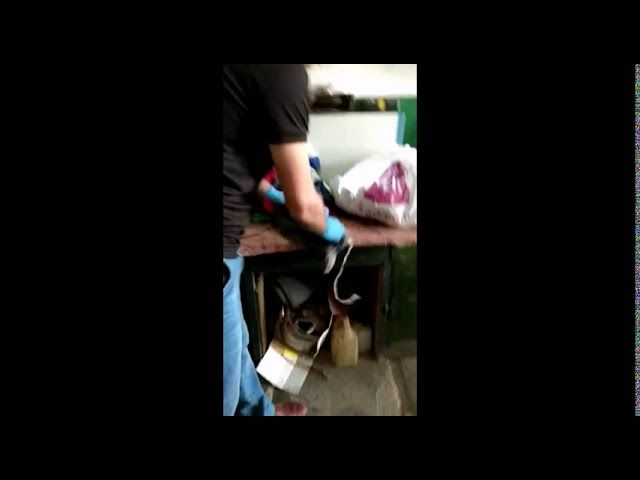У жителя Джанкоя обнаружен схрон с оружием
