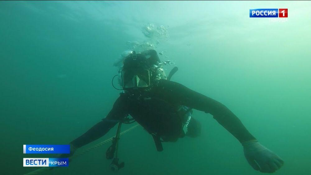 На затонувшем в Крыму теплоходе нашли 18 тысяч снарядов