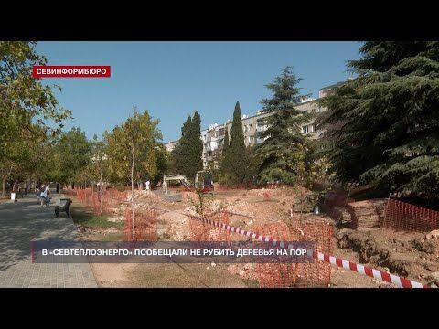 Севтеплоэнерго обещает не рубить деревья на проспекте Октябрьской Революции