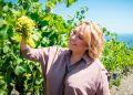 Крымский винзавод «Массандра» стал акционерным обществом