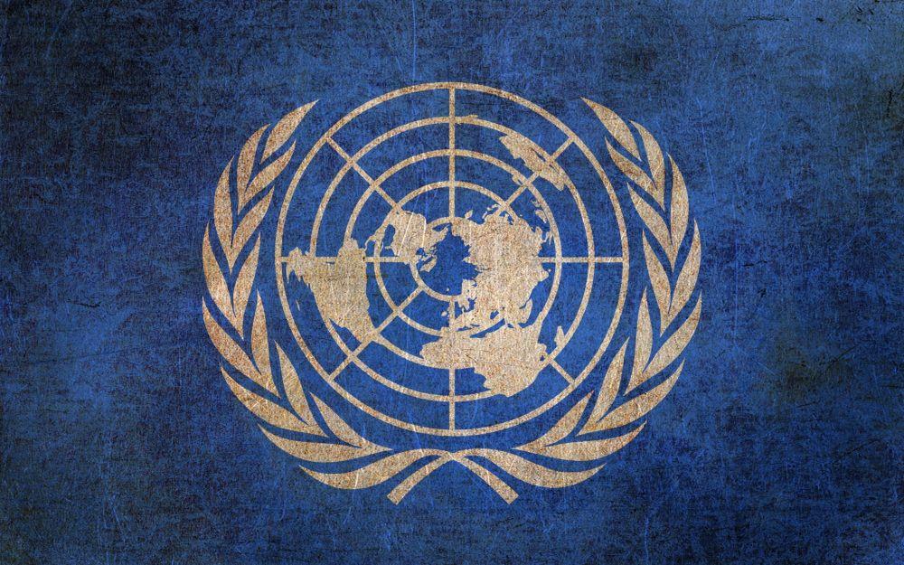 """""""Там царит предвзятость"""": эксперт об Организации Объединённых Наций"""