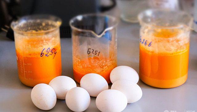 Диетолог развенчал главный миф о куриных яйцах