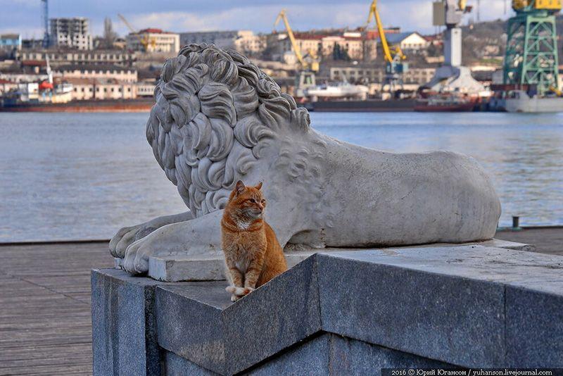 Прогноз погоды на 17 октября: в Севастополе днем — без осадков, а дальше…
