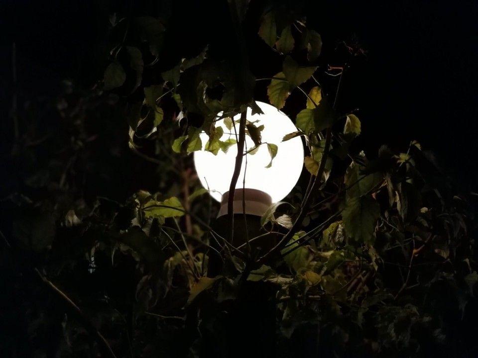 В Симферополе и Севастополе 19 октября частично отключат электричество