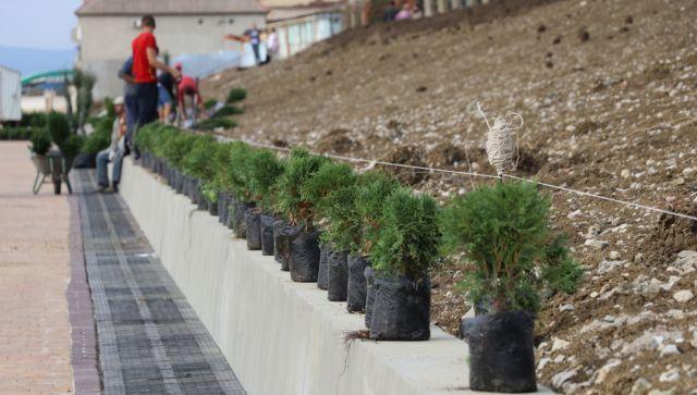 С зеленью, но без фонарей: фото реконструкции набережной в Приморском