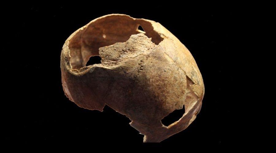 Череп со следами трепанации нашли на раскопках кургана у трассы «Таврида»