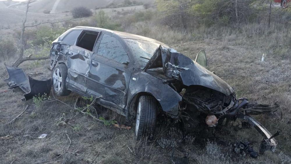 В районе Орджоникидзе «Audi» врезался в дерево — два человека в больнице