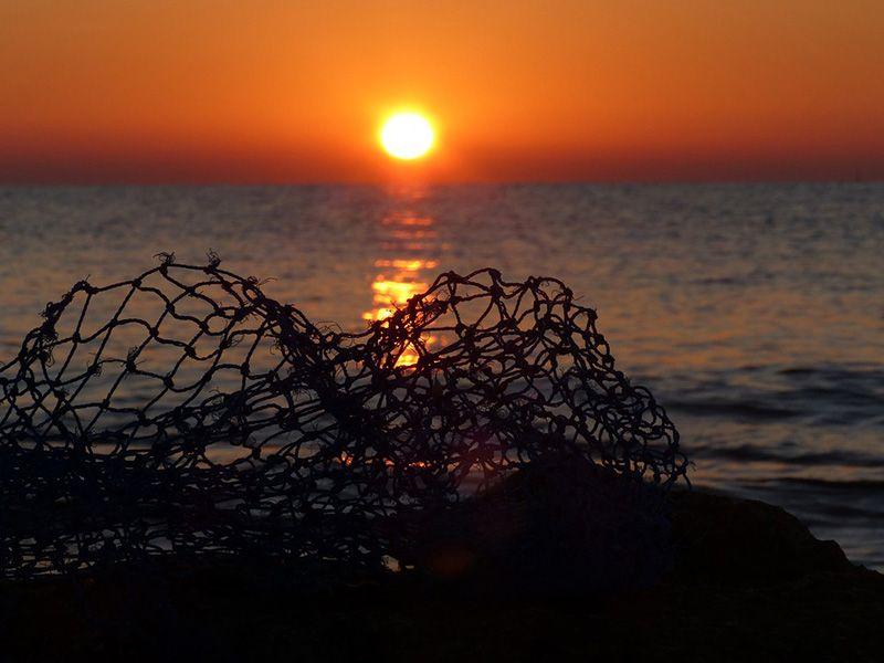Двое крымчан осуждены за браконьерство