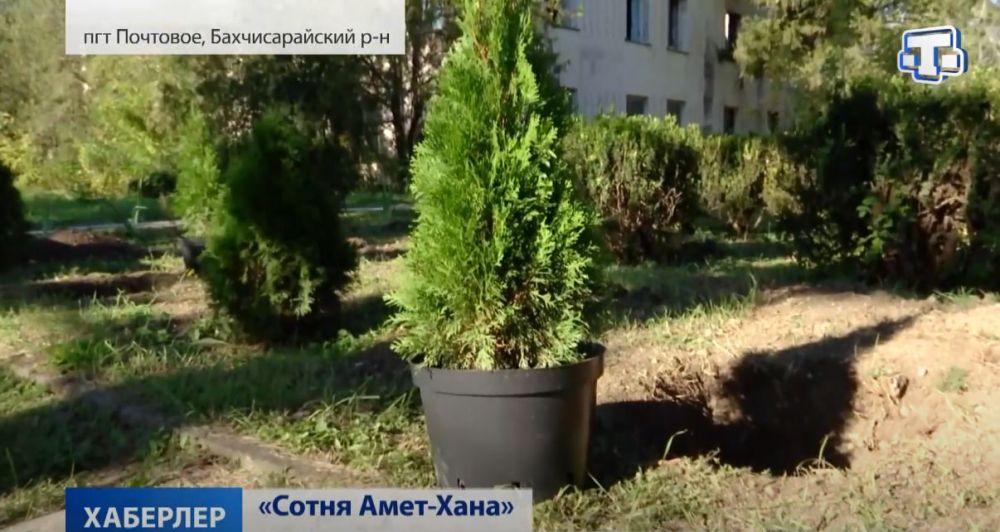 В Симферополе высадили аллею в честь Амет-Хана Султана