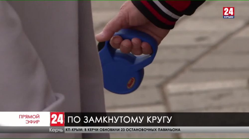 Жители Керчи будут выплачивать штрафы за выгулы своих питомцев в общественных местах