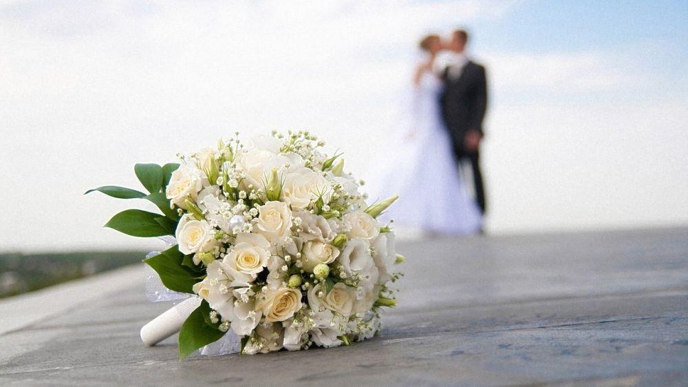 542 пары новобрачных заключили брак на полуострове за две недели