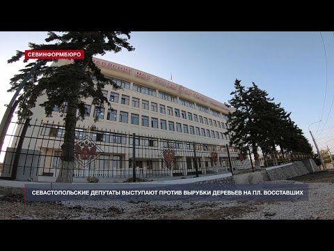 Севастопольские депутаты выступают против вырубки деревьев на площади Восставших