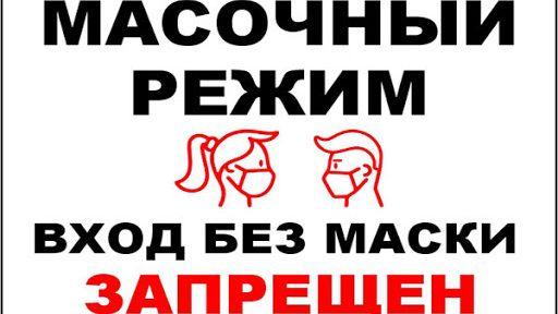 В России введен всеобщий масочный режим