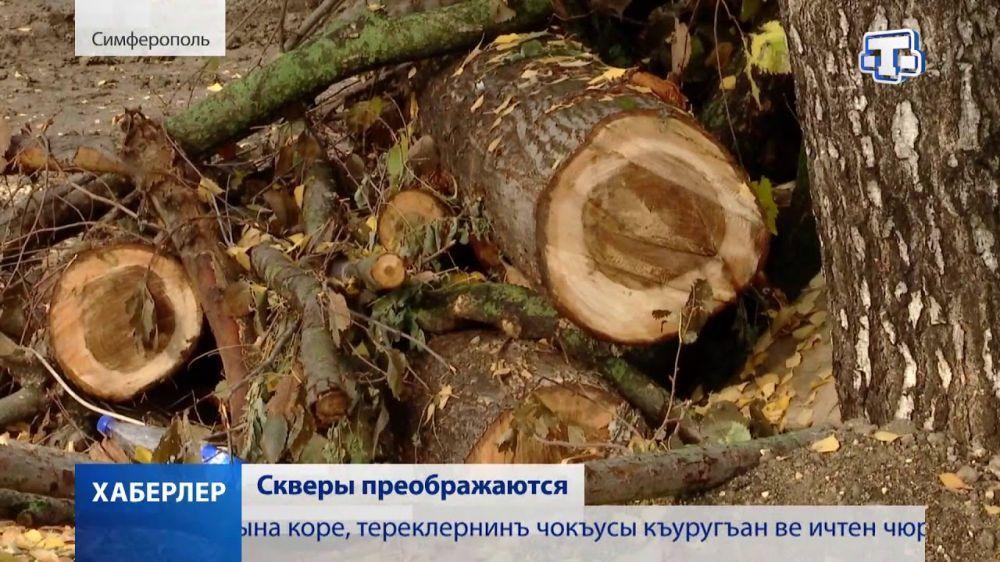 Благоустройство общественных территорий в крымской столице продолжается