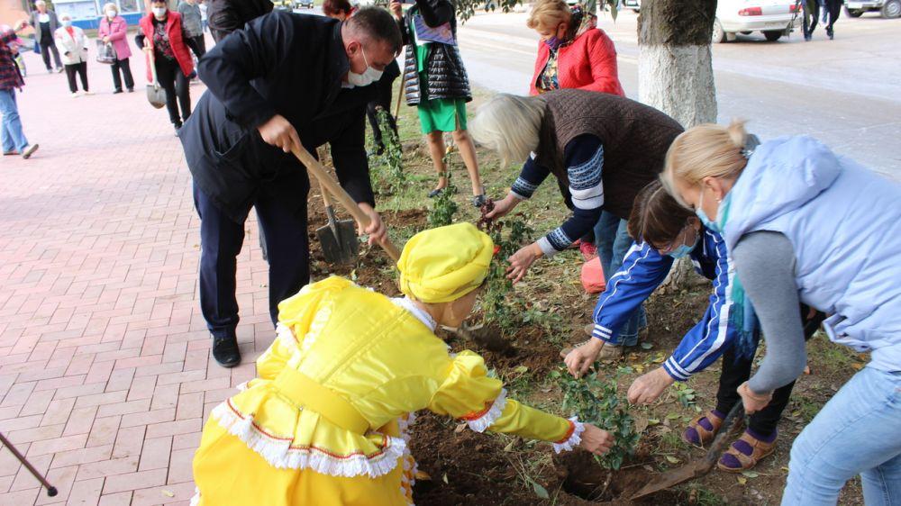 В пгт. Новофедоровка в преддверии государственного праздника – Дня народного единства высажена аллея роз