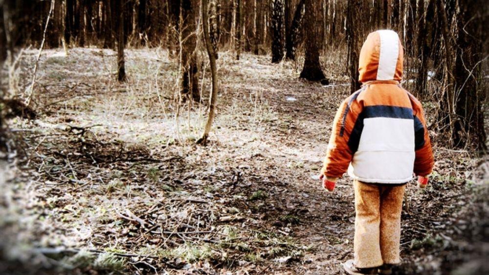МЧС: Если ребенок потерялся в лесу