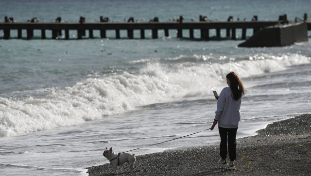 Закрыть полуостров: крымчане о туристах во времяCOVID