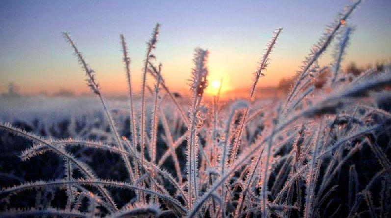 Прогноз погоды на 21 ноября: в Крыму местами ночные заморозки