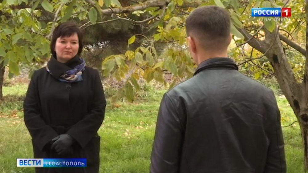 Какие льготы положены врачам в Севастополе