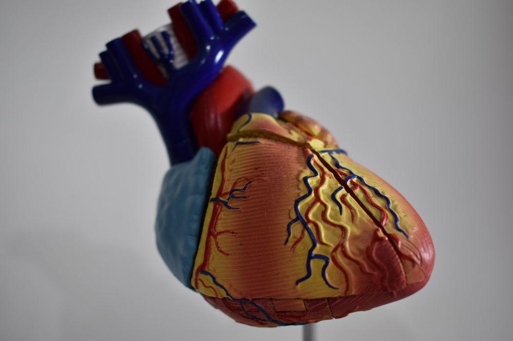 Американский кардиолог рассказал о влиянииCOVID-19 на сердце
