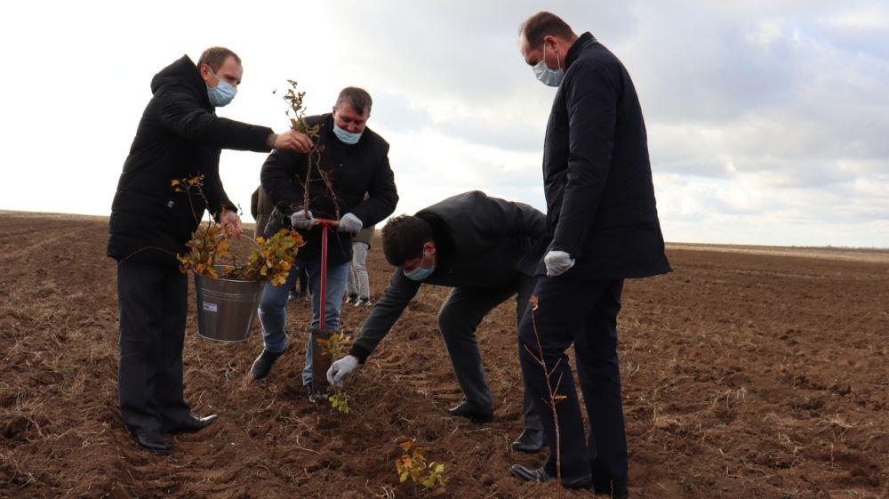 Михаил Слободяник и Владислав Хаджиев приняли участие в акции «Сохраним лес»