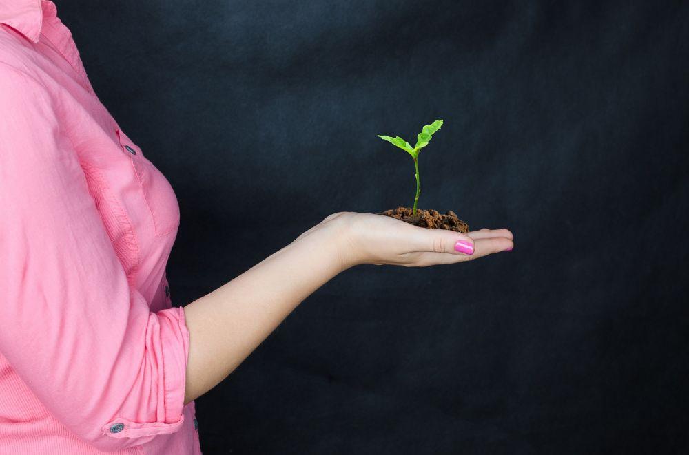 В Крыму певица Зара приняла участие в акции по высадке деревьев