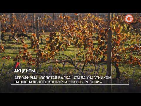 Акценты. Агрофирма «Золотая балка» стала участником национального конкурса «Вкусы России»