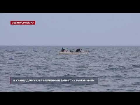 Где в Крыму временно запрещено ловить рыбу