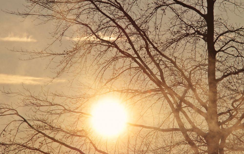 Какой будет погода в Крыму в первый день зимы