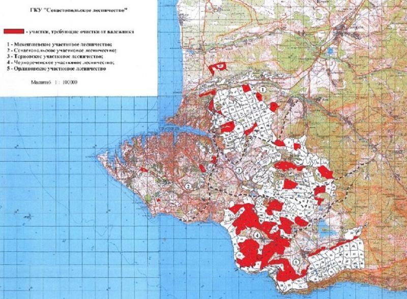 При заготовке валежника севастопольцы могут воспользоваться специальной картой