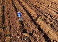 Тракторист в селе Орловка под Севастополем обнаружил немецкую мину