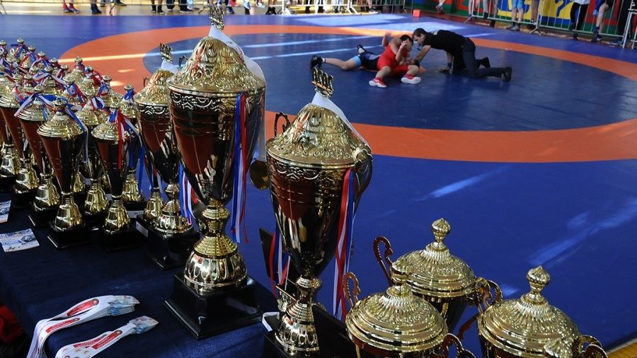 Почти 200 участников собрал юношеский борцовский турнир в Красногвардейском районе