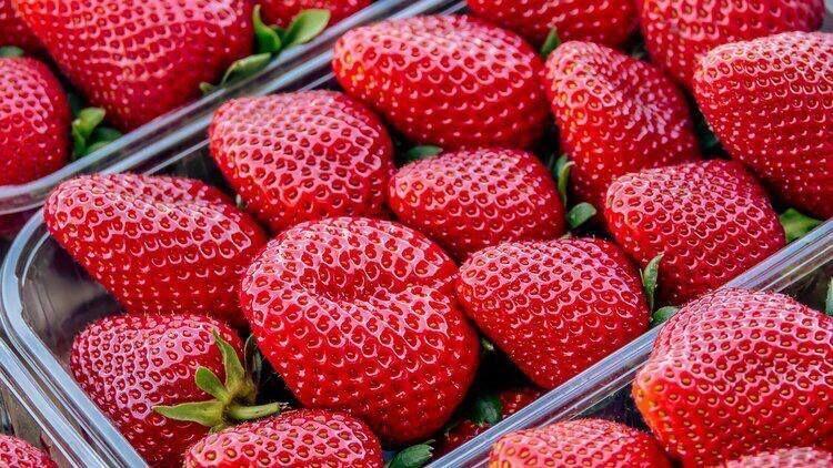 Пять крымских производителей плодово-ягодных культур заслужили статус «Лучшее Предприятие России 2020» - Андрей Рюмшин- А