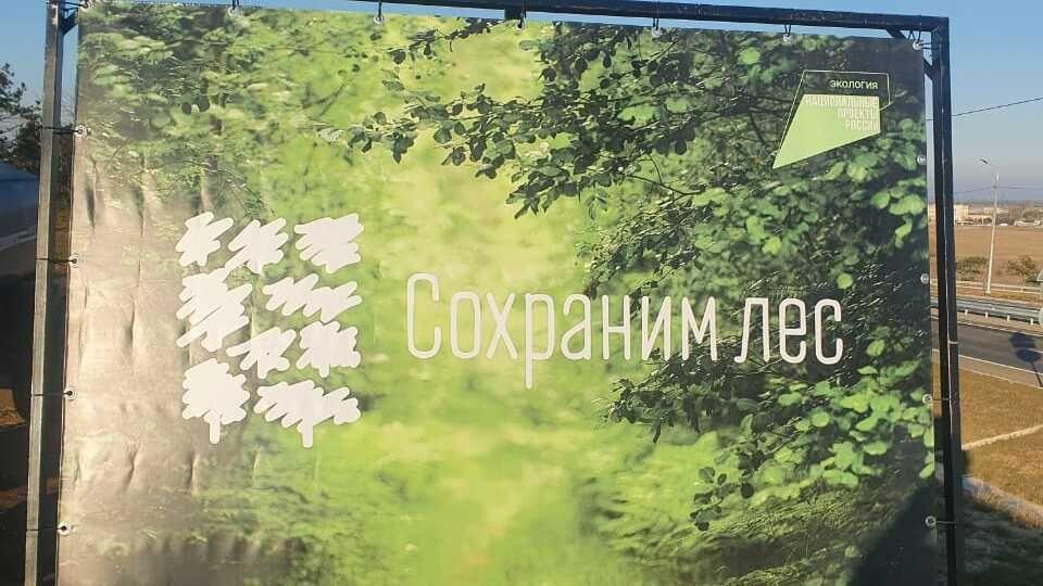 Минприроды Крыма проведено мероприятие по высадке лесных насаждений в поселке ГРЭС