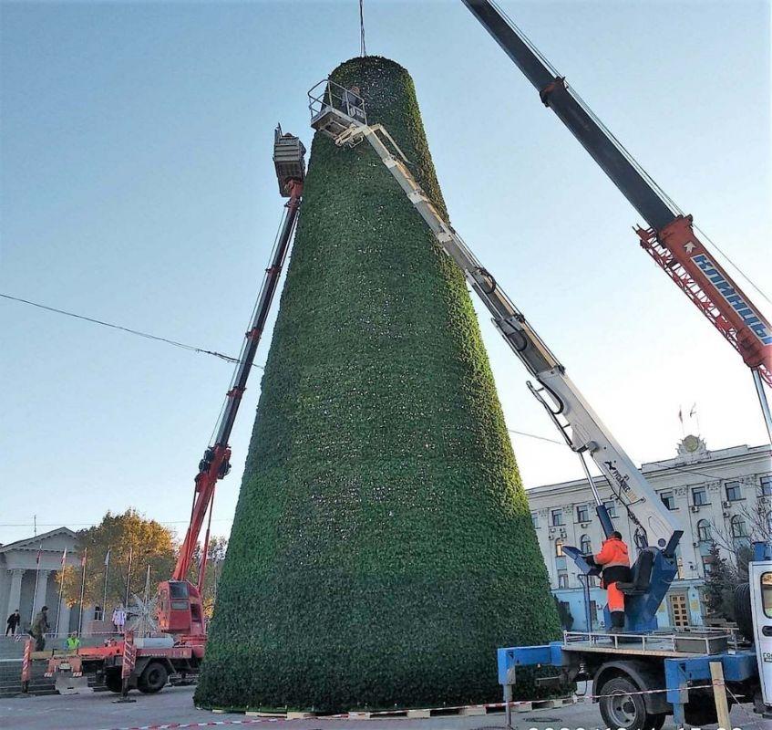 «Полная труба»: Появились фото главной рождественской елки Симферополя