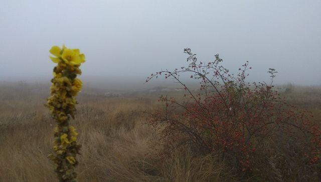 Потерявшихся в Крыму туристов искали в тумане и нашли в пещере