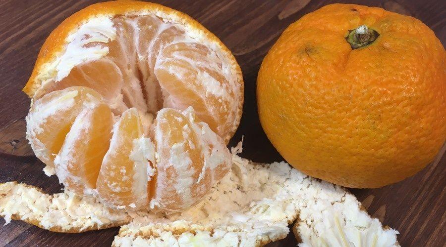 Средний чек на мандарины подскочил за год на 20%