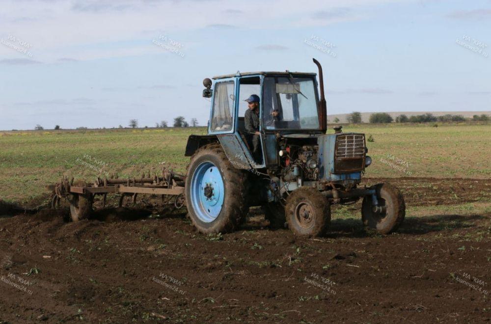 В 2020 году аграрии Крыма получили более трёх млрд рублей субсидий