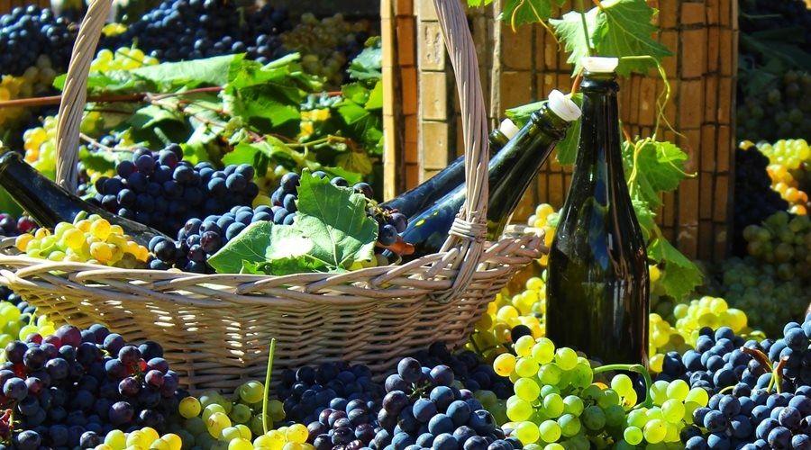 Россияне стали пить больше вина и шампанского