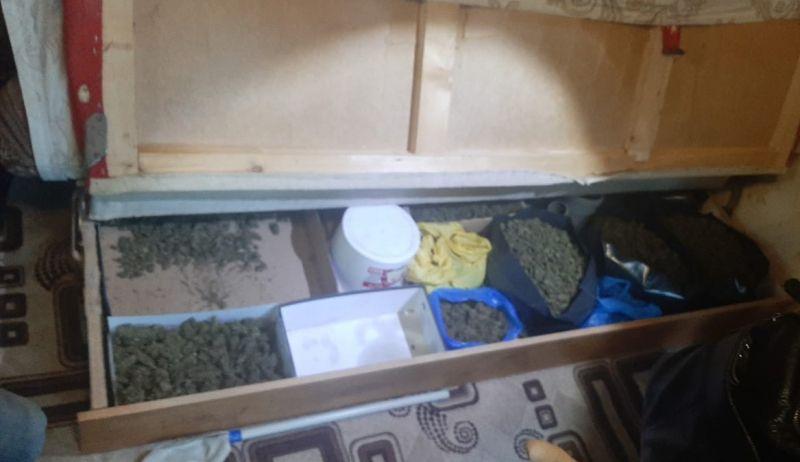 В Судаке сотрудники полиции выявили факт незаконного хранения марихуаны в крупном размере