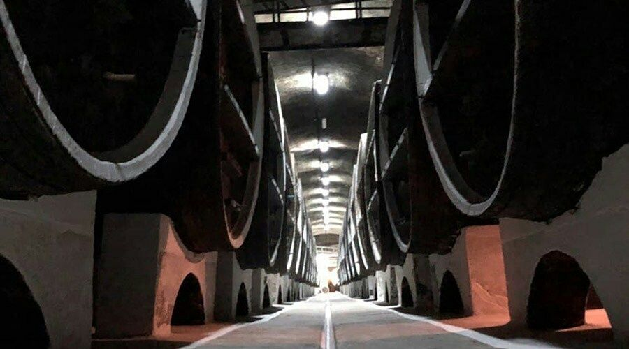 Власти Крыма выставили на продажу завод марочных вин «Коктебель» за 100 млн рублей