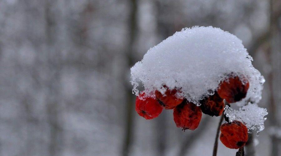 В субботу в Крыму до 7 градусов мороза, снег, на дорогах гололедица