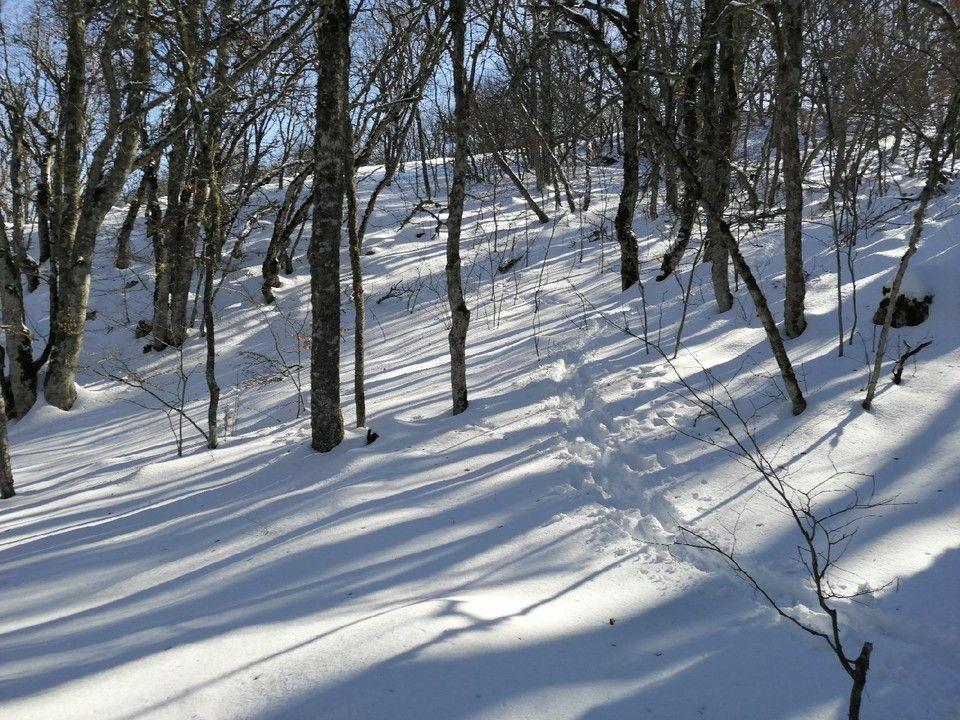 Погода в Крыму на 17 января: снег и температура воздуха около 0°
