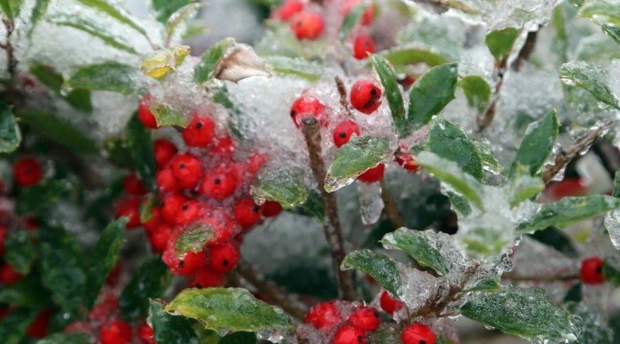 В воскресенье в Крыму до 7 градусов мороза, снег, местами метель