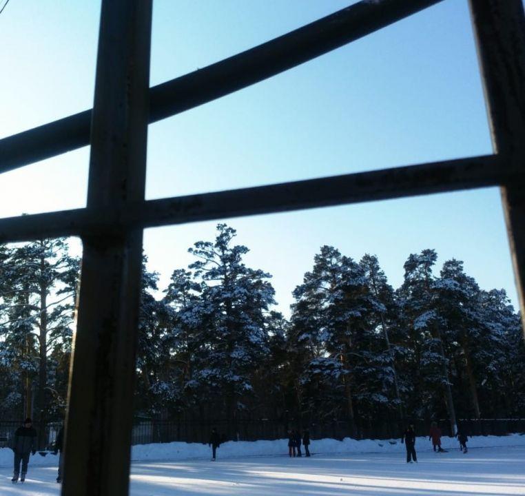 В ближайшие часы столицу Крыма заметет снегом